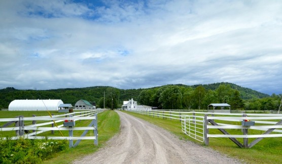 Farms for sale recommended by McGill immobilier
