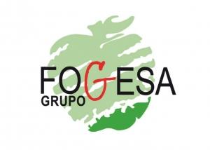 Grupo Fogesa