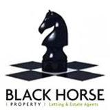 Black Horse Property