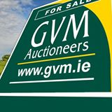 GVM Auctioneers