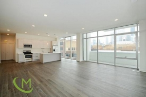 iMove Chicago Properties Images