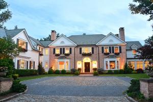 Platinum Properties Properties Images