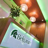 Belgarum